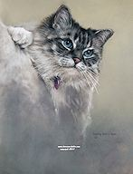 Sapphires and Whiskers - click to view larger