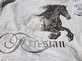 Friesian Hoodie - click to view larger
